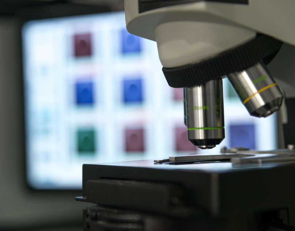 Diagnostico Genético Preimplantacional
